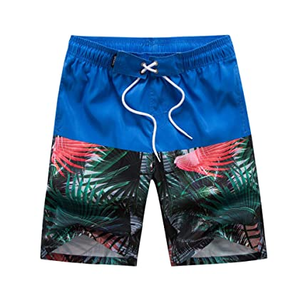 5eb6a8dfa28 Jiayit Men's Plus Size Swim Trunks Holiday Beach Style Men Hawaiian Shorts  Swim Trunks Quick Dry
