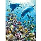 Ravensburger Underwater Adventure – Piece Puzzle 300