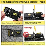 Mouse Traps, Mice Traps for House - Pack of 8