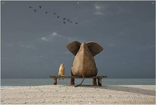 Gr/ö/ße: 61 x 91,5 cm Wallario Garten-Poster Outdoor-Poster Elefant und Hund sitzen auf Einer Bank in Premiumqualit/ät f/ür den Au/ßeneinsatz geeignet