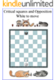 Opposition & Critical Squares: The most important Chess Pattern (Chess patterns Book 4)