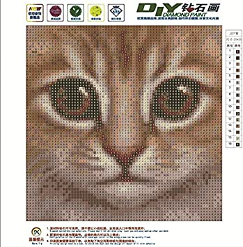 DIY 5D Diamond Painting by Number Kits, Full Drill Crystal Rhinestone Embroidery Pictures Arts Craft for Home Wall Decor Gift (Pink Lion, 25x25cm