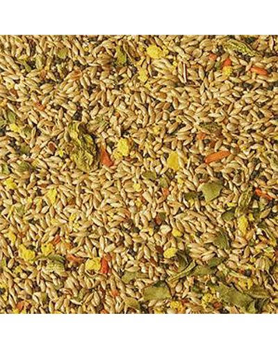 Volkman Avian Science Super Canary Bird Seed 4 Lb (Finch Bird Avian Seed)