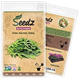 CERTIFIED NON-GMO SEEDS (Appr. 1,100) - Surrey Arugula - Arugula Seeds, Open Pollinated - Untreated, Non Hybrid Vegetable Seeds - USA