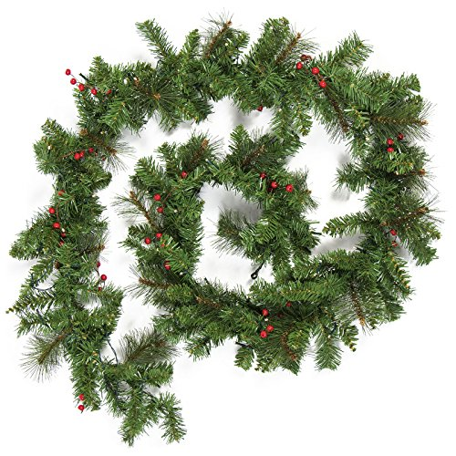 Best Choice Products 9-Foot Pre-Lit Cordless Artificial Christmas Garland with 50 LED Lights, Silver Bristles, Pine Cones, Berries, Green (Christmas Led Lights Garland With)