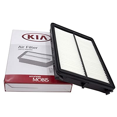 Kia 28113-A9100 Filter-AIR Cleaner: Automotive