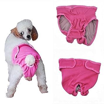 L-Peach Pantalones Sanitarios Lavable Transpirable para Perra ...