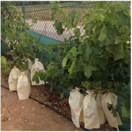 Tecnologías Agrarias 100 Bolsas Protectoras para Uvas (40 cm x 26 ...