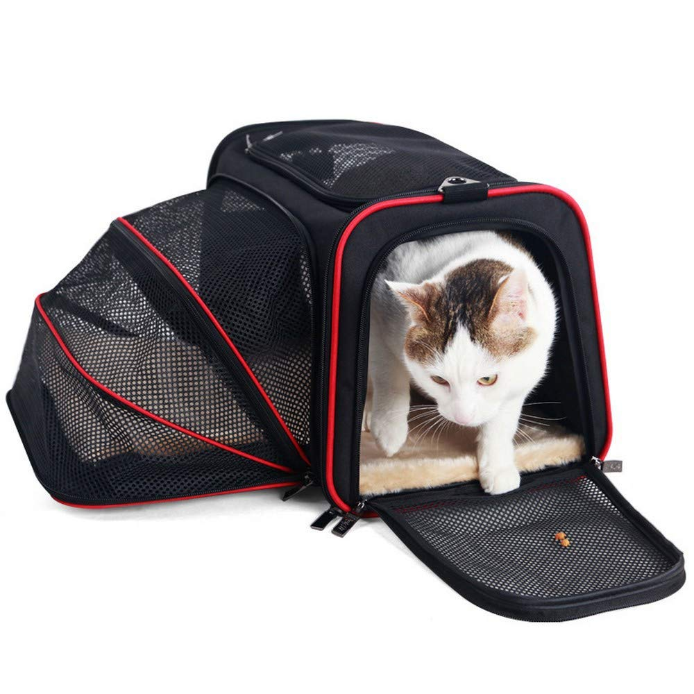 DHCY Pet backpack out bag cat bag dog bag collapsible dog backpack Teddy out portable pet backpack