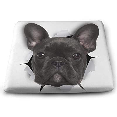"""Osvbs Black Bulldog Decorative Seat Cushions 1.2"""" × 13.8"""" × 15.0"""" for Home Office Dinning Chair Solid Color Indoor Outdoor: Home & Kitchen"""
