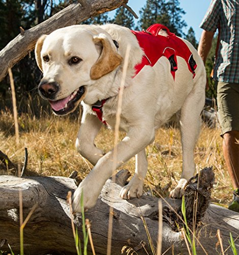 Wear Web Ruff - RUFFWEAR Webmaster RED Dog Harness ♦ Secure Reflective Multi Purpose (Large/XL)