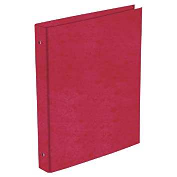 Carpeta Archivador PRAXTON Cartón Forrado Brillo Fucsia, Folio 4 Anillas 25 mm.: Amazon.es: Oficina y papelería