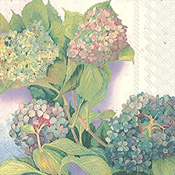 Ideal Home Range 20 Count Hydrangea Bush Paper Cocktail Napkins