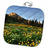 3dRose Danita Delimont - Utah - Willard Basin, Uinta-Wasatch-Cache, Utah, USA - US45 HGA0462 - Howie Garber - 8x8 Potholder (phl_147347_1)