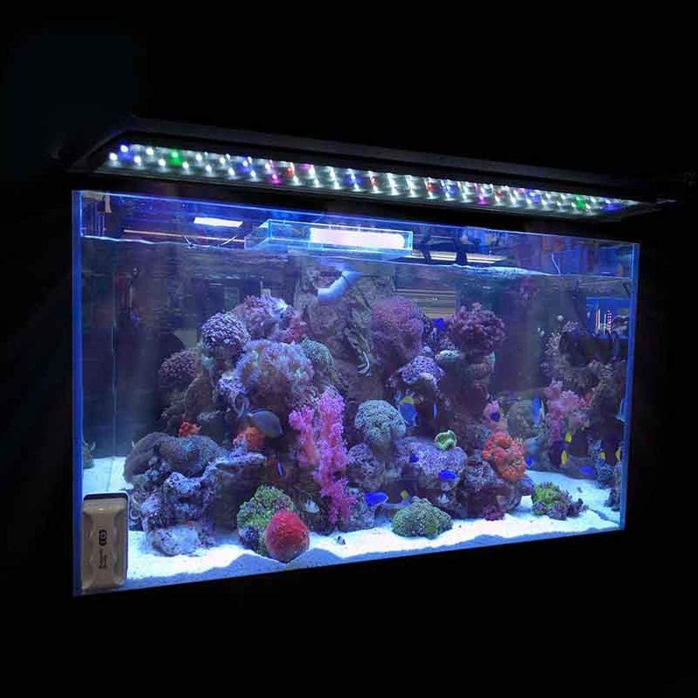 Vstella Illuminazione per acquari a LED con Staffa a Scomparsa Bianco Blu Chiaro