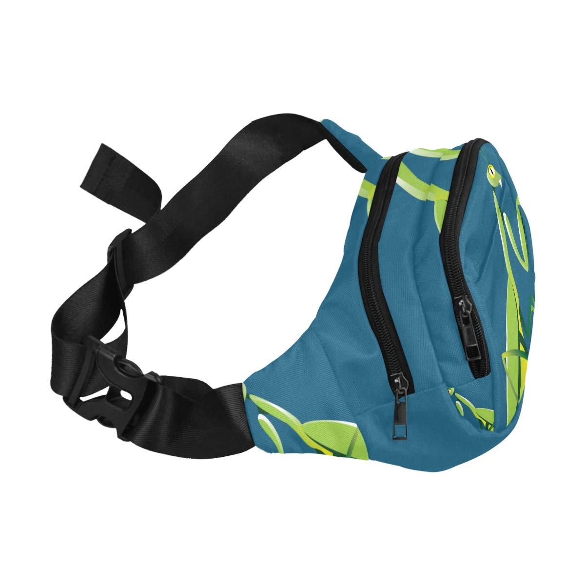 A Wounded Little Mantis Fenny Packs Waist Bags Adjustable Belt Waterproof Nylon Travel Running Sport Vacation Party For Men Women Boys Girls Kids