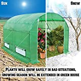BenefitUSA Large Walk in Outdoor Plant Gardening (10'x7'x6') Greenhouse