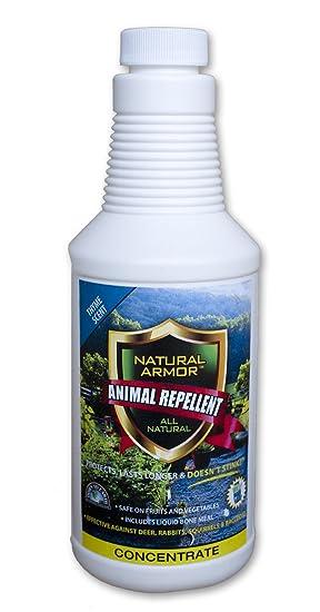 Repelente Spray para. Gatos de animales y roedores, ratas, ardillas, ratón y