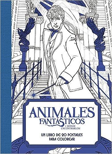 Animales Fantasticos Y Donde Encontrarlos Un Libro De 20 Postales