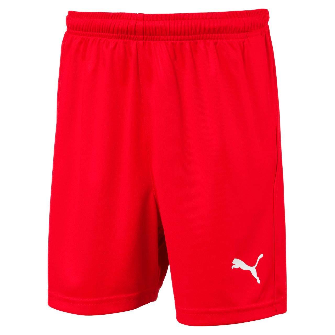 Puma Kid's LIGA Shorts Core w Brief Jr Trousers