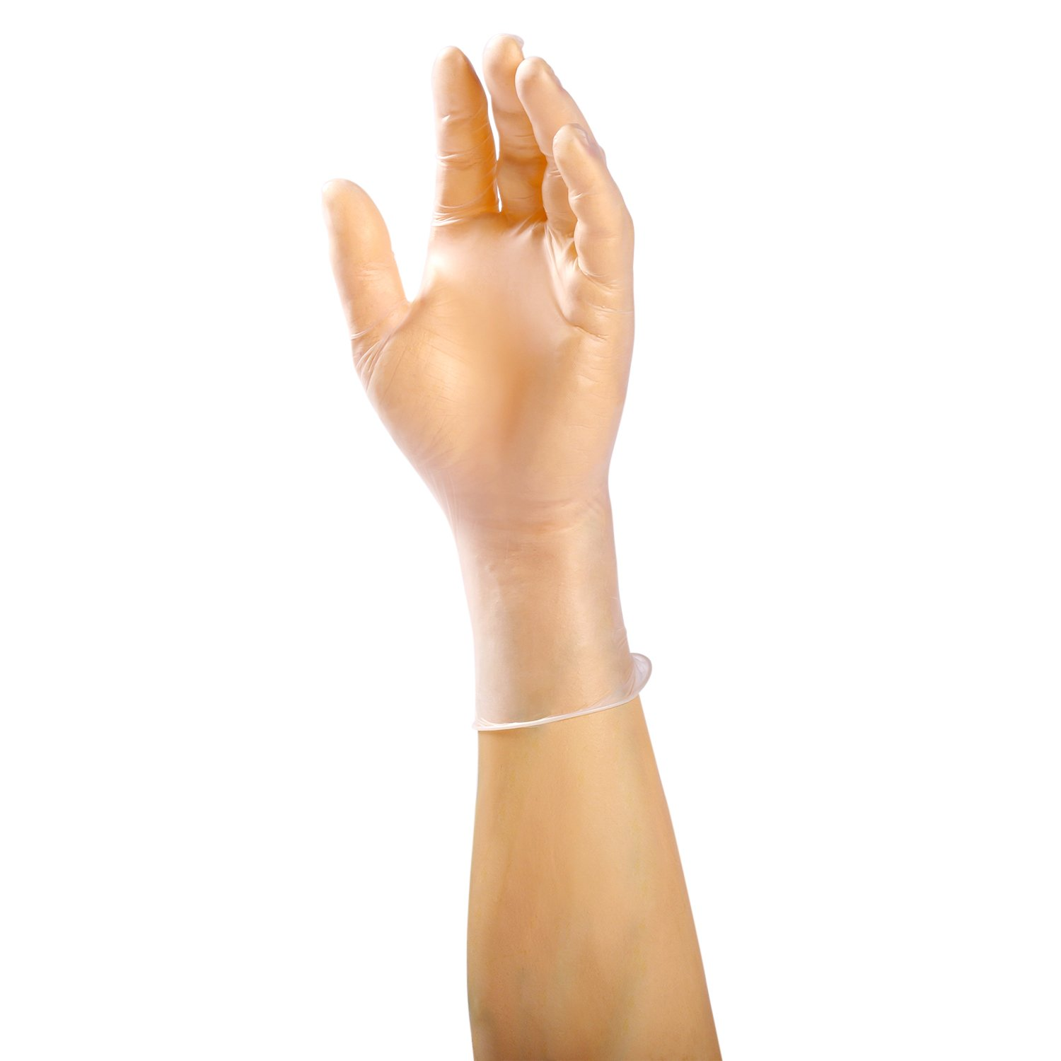 AmerCare 22993-C Anchor Powder Free Vinyl Gloves, Large (Pack of 1000) by Amercare (Image #3)