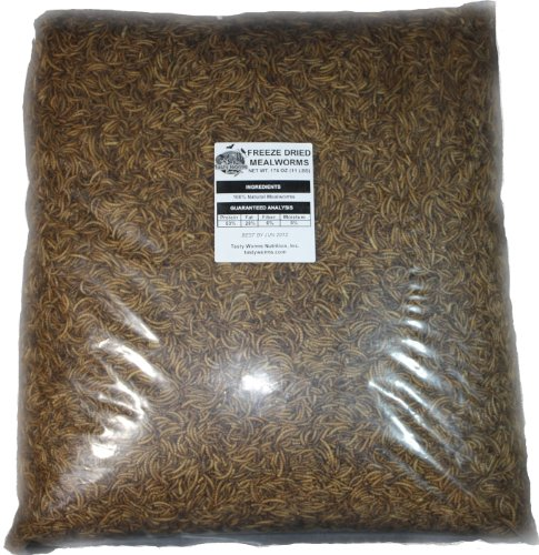 22 Lbs Tasty Worms Bulk Freeze Dried Mealworms Approx. 352,000ct, My Pet Supplies