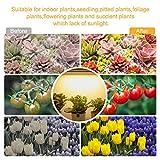 Mosthink LED Plant Grow Light Strips Full Spectrum