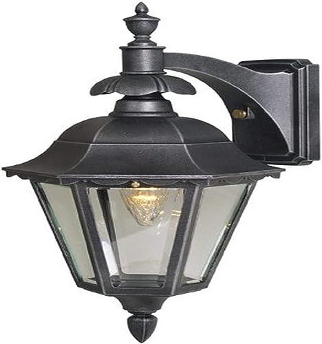 Special Lite Products Chesapeake F-2731-BLK BV Medium Top Mount Light, Black