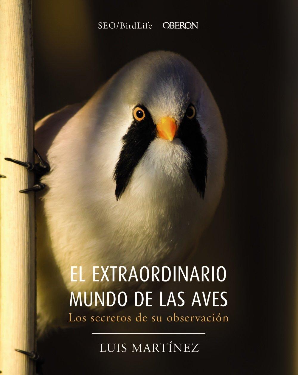 El extraordinario mundo de las aves. Los secretos de su observación: Amazon.es: Sociedad Española de Ornitología: Libros