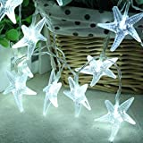 LED Lamps Lights, Forthery LED Long Christmas Curtain String Fairy Wedding Led Lamps Lights for Weddings, Party, Home, Window Decorations (10 PCS, White)