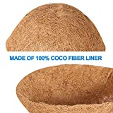"Budding Joy 4PCS 12"" Round Coco Liner Coco Fiber"