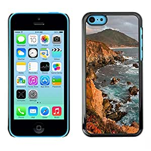 SUPER PIG CASE - Ocean Seas - FOR iPhone 5C - Hard Case Cover Shell