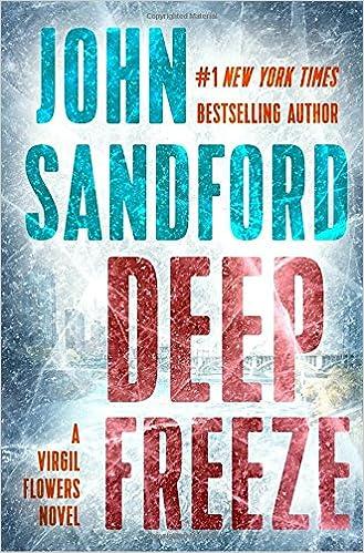 Image result for deep freeze john sandford