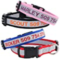 Reflective Personalized Dog Collar, Custom Embroidered w/Pet Name & Phone - Blue, Black, Pink, Red & Orange Collars for Boy & Girl Dogs; 3 Adjustable Sizes: Small, Medium, Large. Highly Reflective. by GoTags