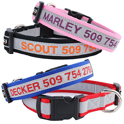 Buy personalized dog collars