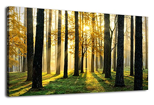 arteWOODS Canvas Wall Art Forest Morning Painting Nature Pictures Panoramic Canvas Arotwork Sunshine Woods Green Grass Yellow Leaves Wall Art for Home Office Decoration Framed Ready to Hang 20