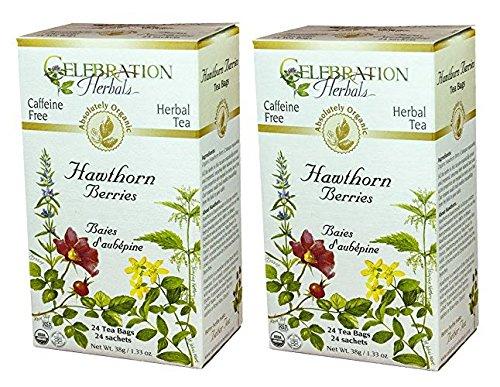 Hawthorne Berries 24 Bags (Celebration Herbals Organic Hawthorne Berries Tea Caffeine Free - 2 Pack (48 Teabags in Total))