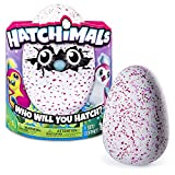 Hatchimals ''Who will You Hatch?'' Interactive Hatching Egg [Spin Master] (Pengualas(DeepPinkYellow/ HotPinkWhite))