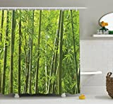 Bamboo Decor Shower Curtain Set By Ambesonne, Exotic Tropical Bamboo Forest With Fresh Color Asian Nature Wildlife Trees Leaves Decor Print, Bathroom Accessories, 69W X 70L Inches, Green