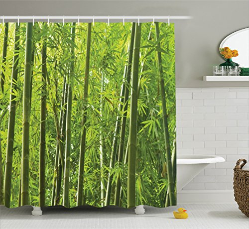 Bamboo Decor Shower Curtain Set By Ambesonne, Exotic Tropical Bamboo Forest  With Fresh Color Asian