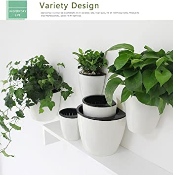 Amazon.com: Creative Suction Cup Water hanging Flower Pot, Plants ...