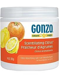 Natural Magic Odor Absorbing Gel, 14 oz