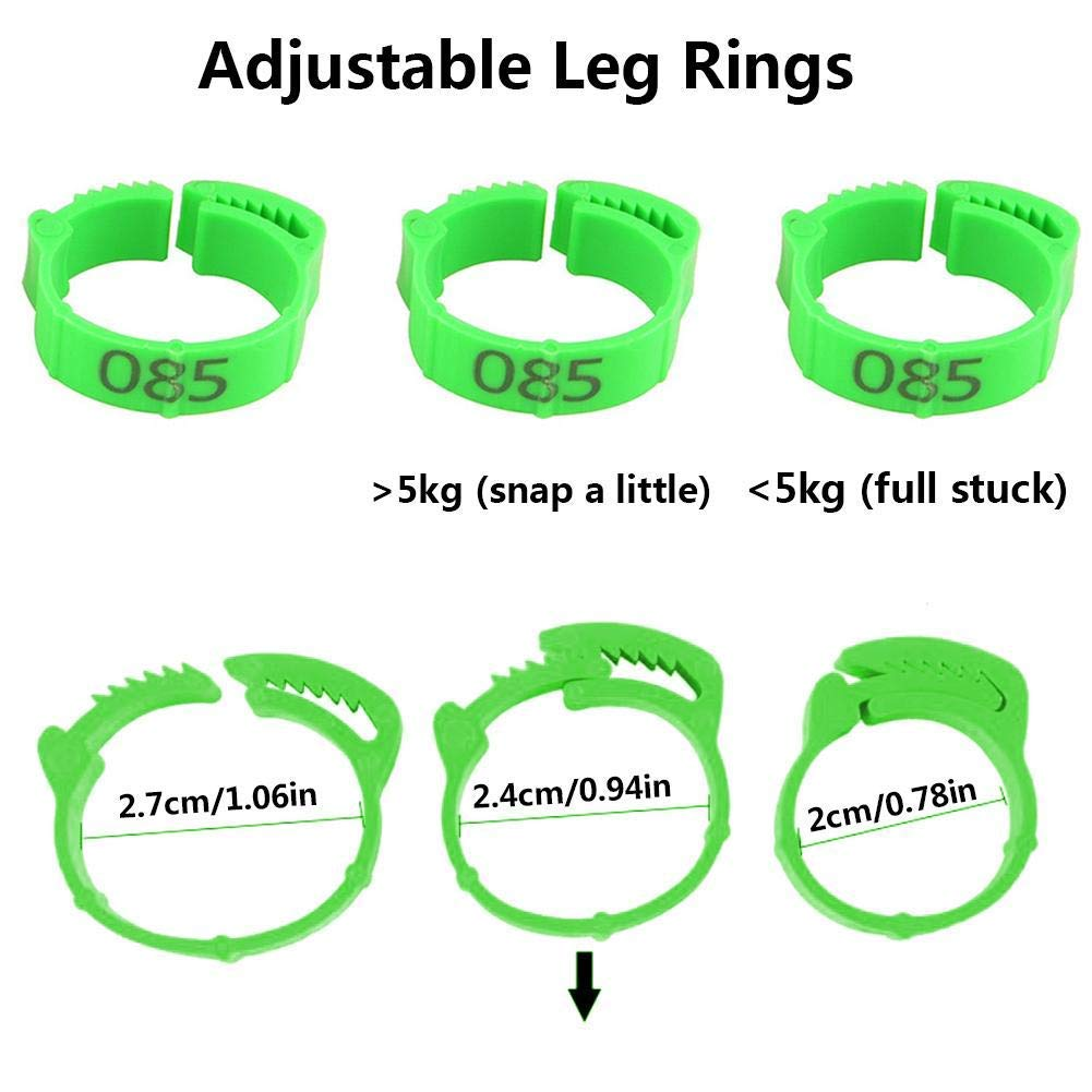 Green Farm /& Ranch Bird Leg Bands Poultry Leg Rings with number 001-100 diameter 20mm poultry feet rings for Chicks Leg Band Duck Clip Rings Bands