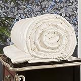 LilySilk All Season Silk Comforter with Silk Shell 100% Silk Duvet Queen 87x90 Inches