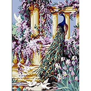 Pictures Diy Paint by Numbers for Adults Beginner Kids Teens Children Seniors Junior Students Animals DIY Oil Painting Simple Paintworks - Peacock and Flower 16 x 20 Inches Frameless