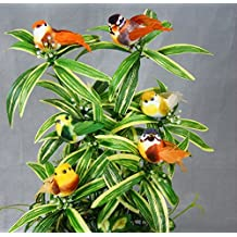 One Dozen, 3.5 Inch Artificial Assorted Mushroom Birds Have Dyed Feather Wings & Tail Wired Feet In 6 Assorted Colors