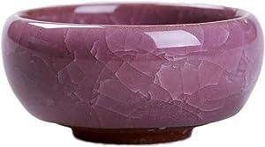 Jing Ger 1 PCS Ceramic Pots Ice-Crack Glaze 7 Color Flower Ceramics Succulent Plant Mini Pot Garden Flowerpot for Home Office Decoration (Color : Purple)