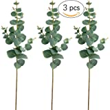 "Supla 3 Pcs Artificial Silver Dollar Eucalyptus Spray in Green 26"" Tall for Artificial Plants Artificial Greenery Accent Greenery Floral Arrangment artificial wedding greenery"