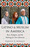 "Harold Morales, ""Latino and Muslim in America: Race, Religion, and the Making of a New Minority"" (Oxford UP, 2018)"
