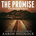 The Promise   Aaron Shedlock
